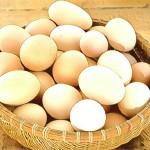 """""""Человеку мудрому свойственно сегодня заботиться о завтрашнем дне и не класть все яйца в одну корзинку"""" Мигель Сервантес"""