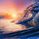 """""""Нельзя открыть новые океаны, если не решаешься отплыть от берега"""" Аноним"""