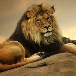 «Контроль над собой приводит к успеху»  Джон М. Темплтон