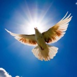 «Тот не свободен, кто не господин себе самому»  Эпиктет