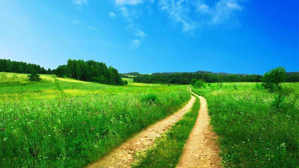 «Вы выбираете ту дорогу, по которой хотите идти»  Джон М. Темплтон